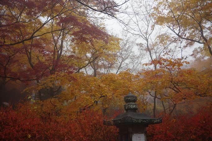奈良の談山神社の紅葉!縁結びの恋神社