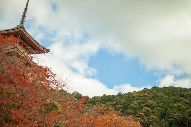 京都の紅葉の見ごろと名所!お寺や神社をご紹介
