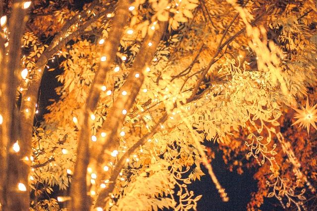 クリスマスイルミネーション2015!関西のおすすめスポット
